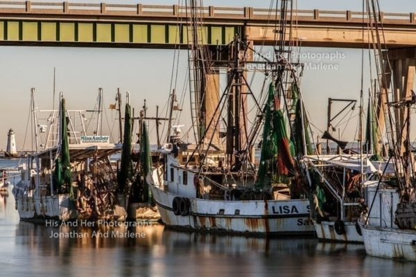 Savannah Collection Photo - Tybee Shrimp Boats TYB#8