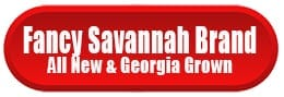 Fancy Savannah Brand